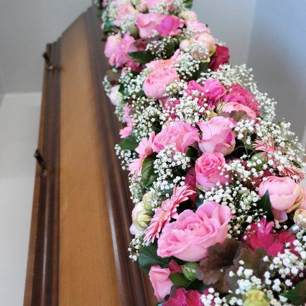 Rosa Linie Bild 1