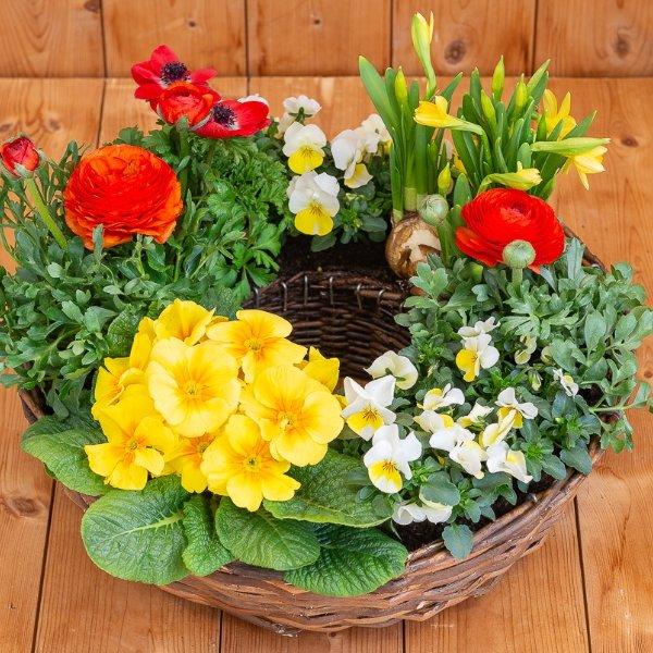 Frühlingskranz 1 Bild 1