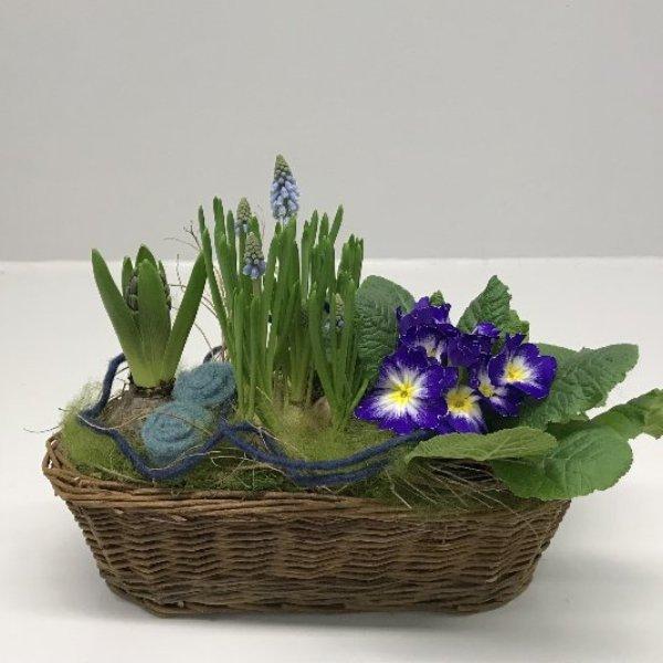 Frühling im Korb 2 Bild 1
