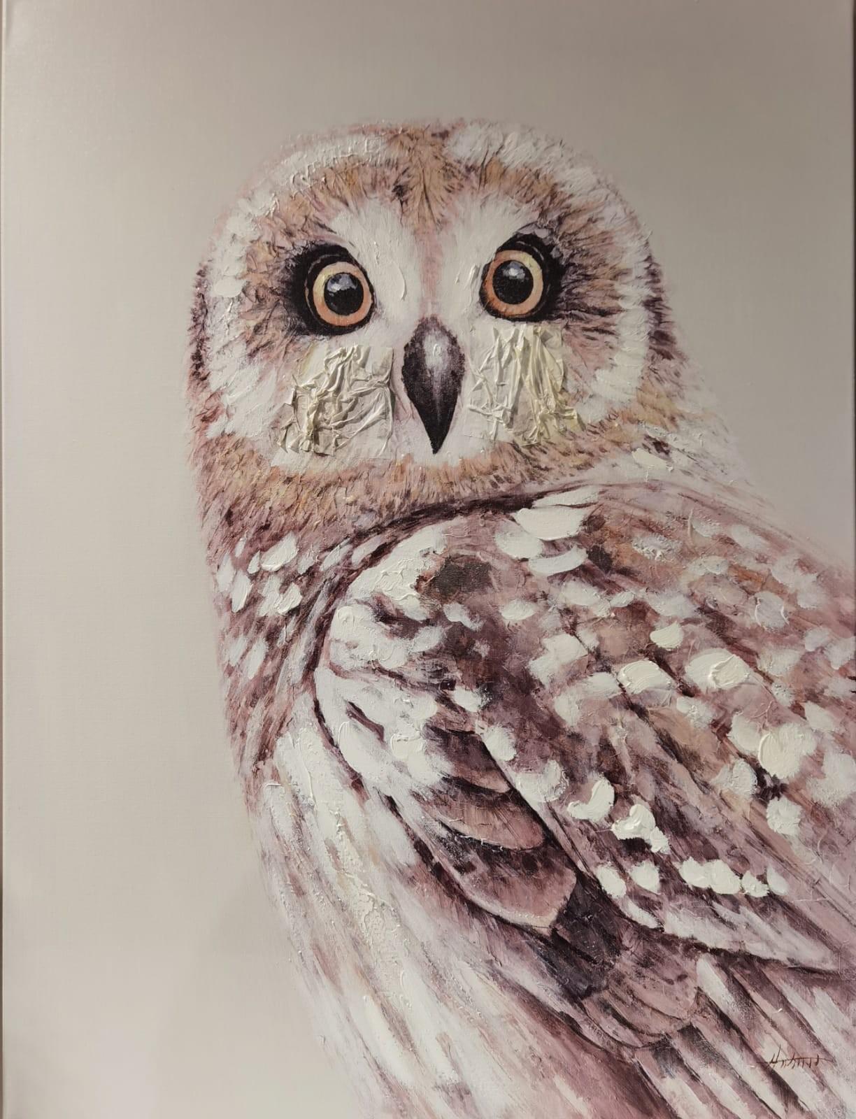 Nature Owl Bild 2