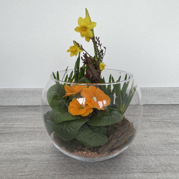 Frühlingsblüher im Glas Bild 2