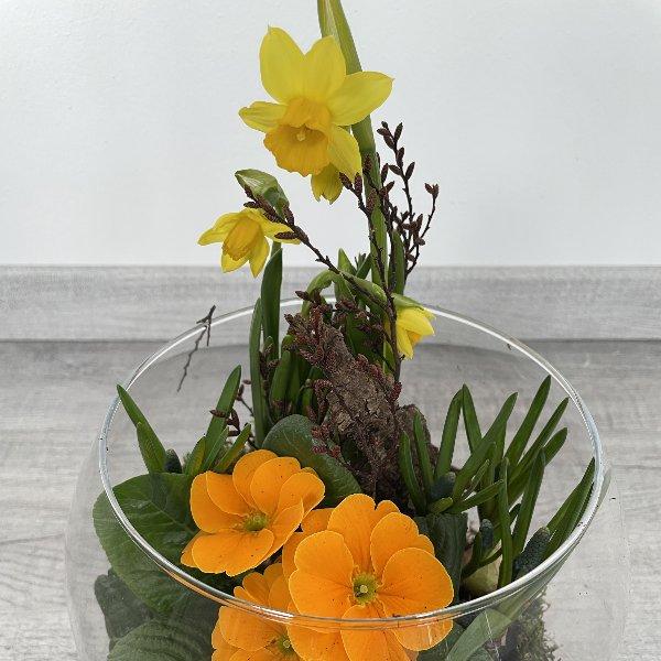 Frühlingsblüher im Glas Bild 3