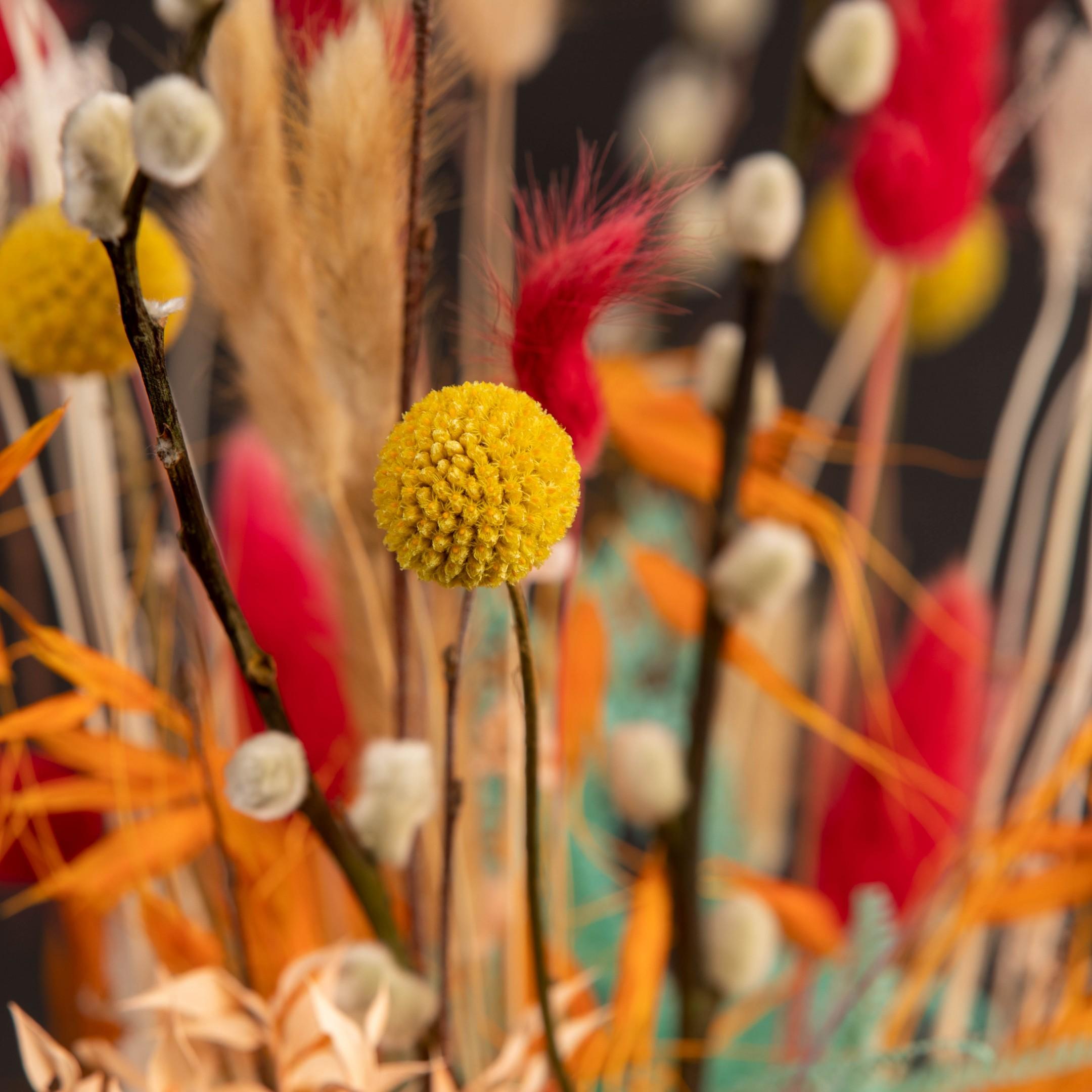 Trockenblumenbund Farbenfreude Bild 5