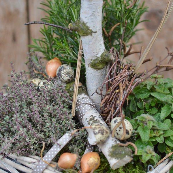 Kräuterkorb Bild 2