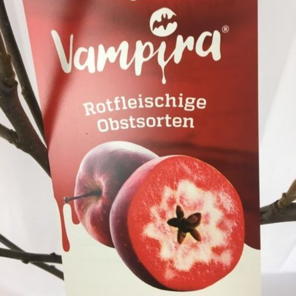 """Apfelbaum """" Vampira"""" Bild 2"""