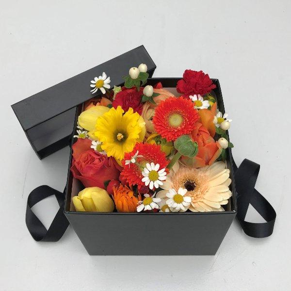 Blumenbox Sommer bunt Bild 1