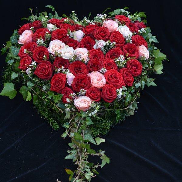 Blütenherz- Das Rosige Bild 1