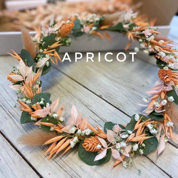 #22 Dried-Hoop apricot Bild 1