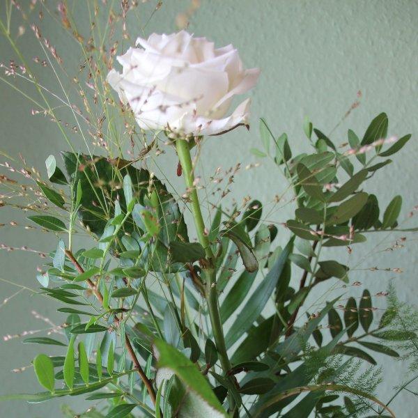 Rose einzel toll gebunden Bild 2