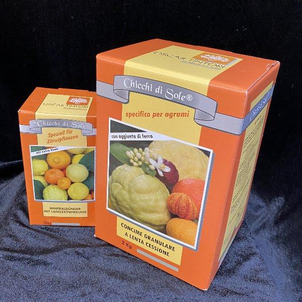 Dünger für Citruspflanzen Bild 1