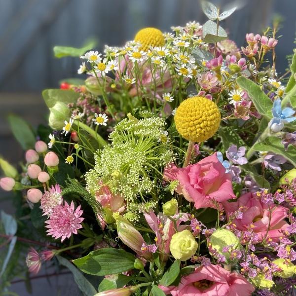 #1 Blumenwiese Bild 2