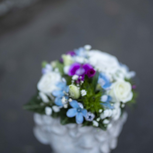 Flower Face Bild 3