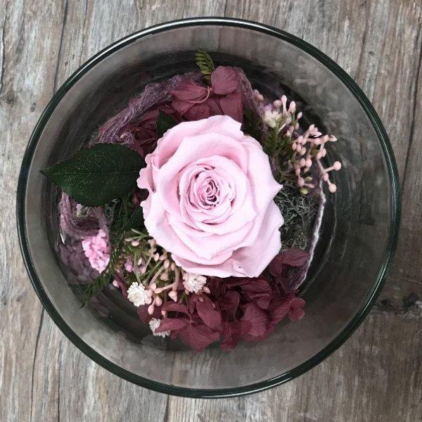 Infinity Rose im Glas - rosa Bild 1