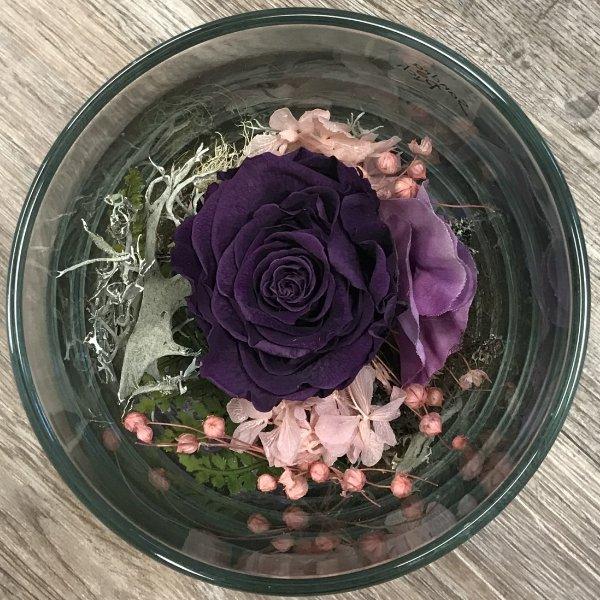 Infinity Rose im Glas - violett Bild 1