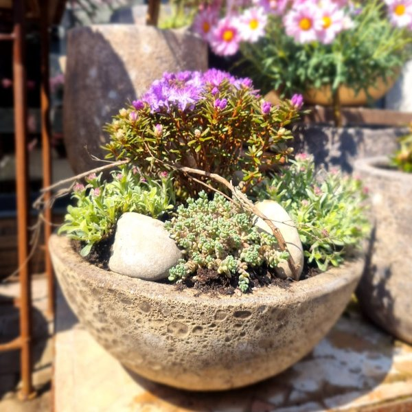 Gartenglück Bild 1
