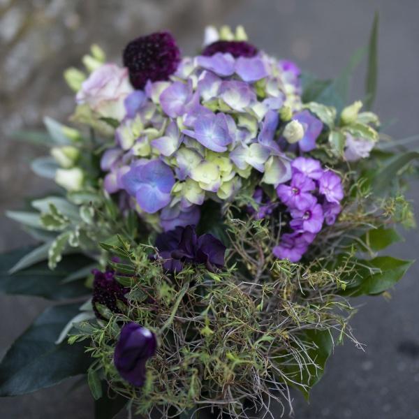 Hortensienliebe Bild 1