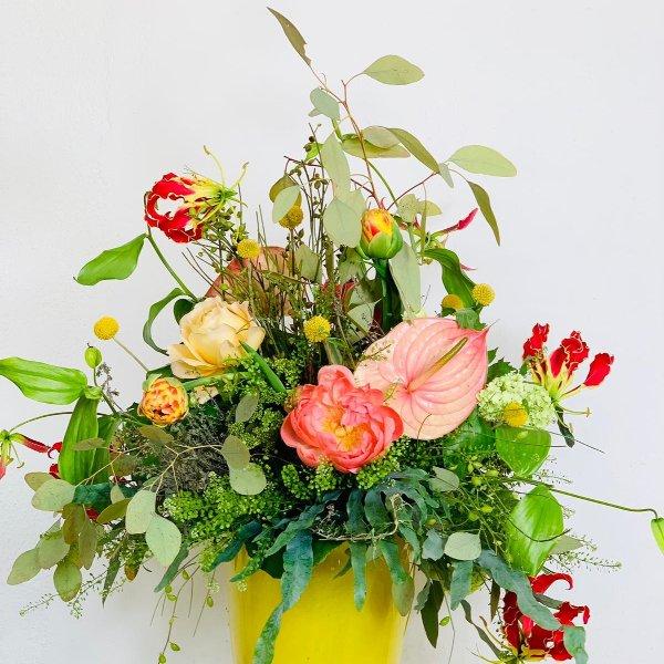 Blütenfeuer Bild 1