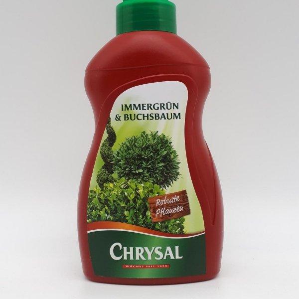 Chrysal Immergrün- und Buchsbaumdünger Bild 1