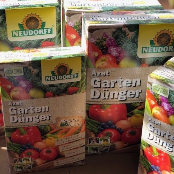 Gemüse-Pflanzen Bild 7