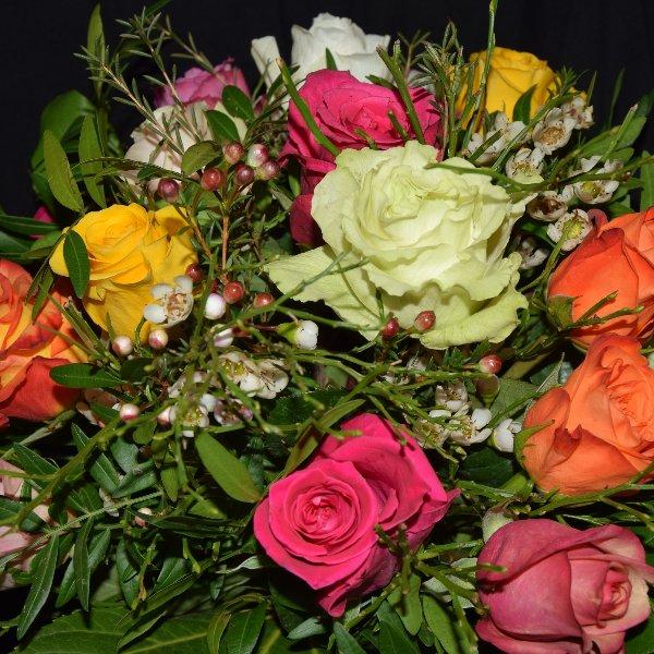Bunte Rosenvielfalt Bild 1