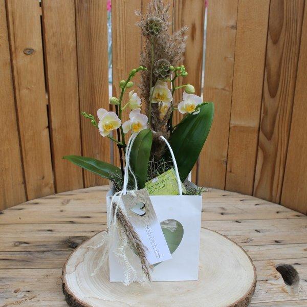 Orchidee im Herztäschchen mit Seife & Kärtchen Bild 1