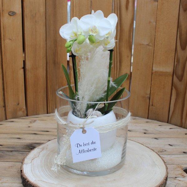 Orchidee im Glas mit Karte Bild 1