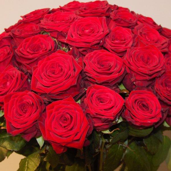 """Strauß """"Rosen pur"""" Bild 4"""