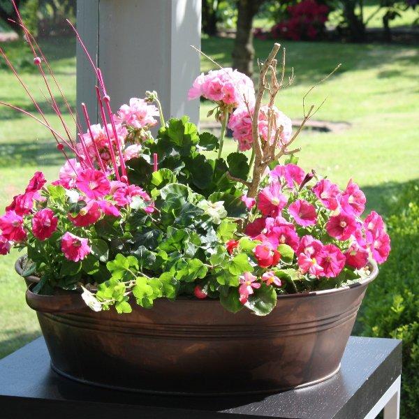 Blumenschale mit Blumen der Saison Bild 1