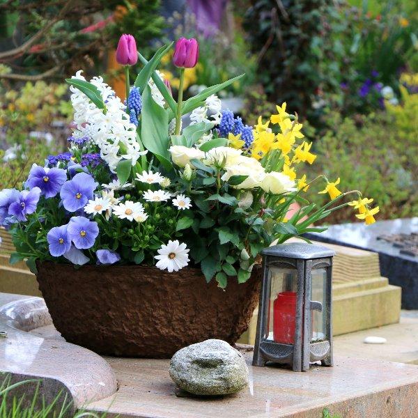 Blumenschale mit Blumen der Saison Bild 2