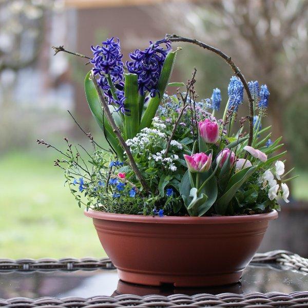 Blumenschale mit Blumen der Saison Bild 3
