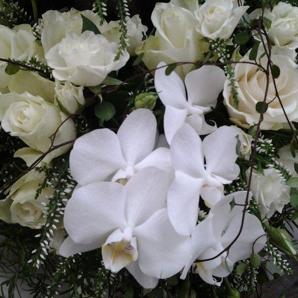 Urnenkranz Orchidee weiß Bild 3
