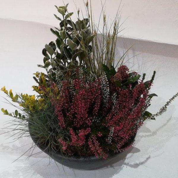Grabscha 6    Bepflanzte Schale Bild 1