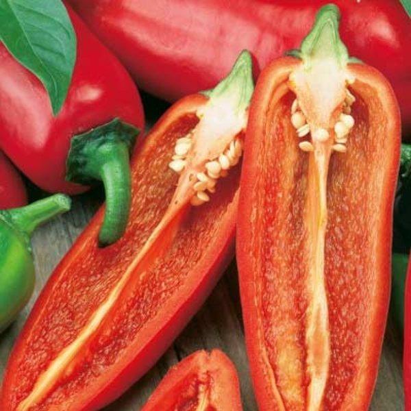 Midi Snack Paprika rot Bild 1