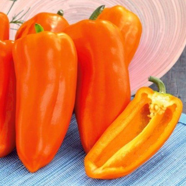 Midi Snack Paprika orange Bild 1
