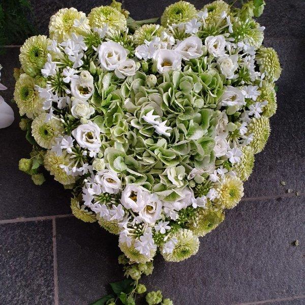 H 14 weiß-grünes  Herz Bild 1