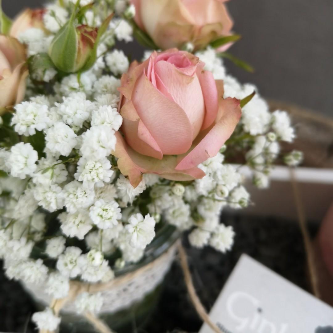 """Rose Geranium """"für eine mückenfreie Zeit"""" Bild 2"""