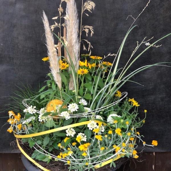 Pflanzschale in gelb-weiß (Sommer) Bild 1