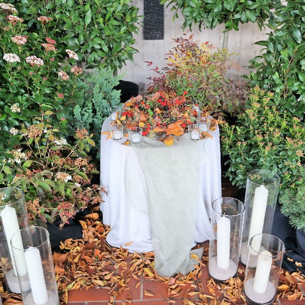 Buchenhain Bild 2