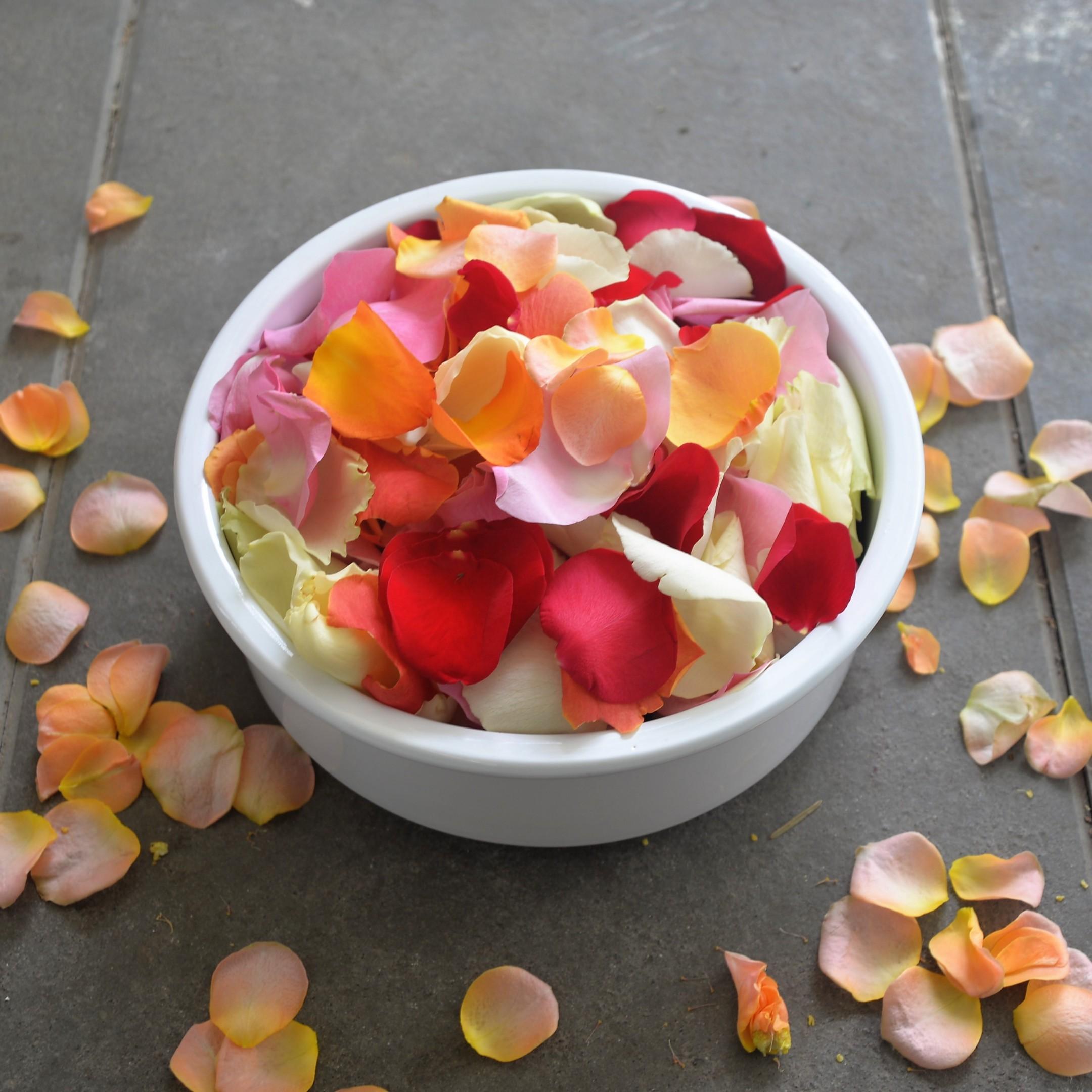 Blumenschale Bild 1