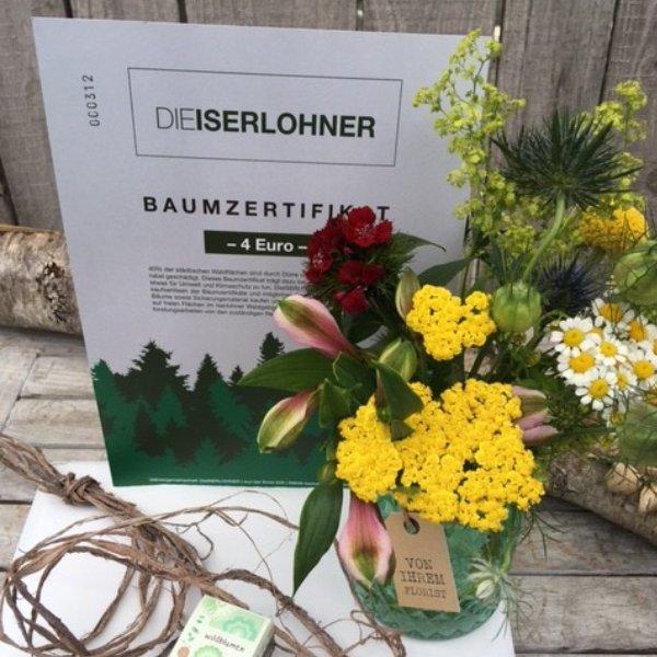 Baumzertifikat mit Wildblumenbombe Bild 1