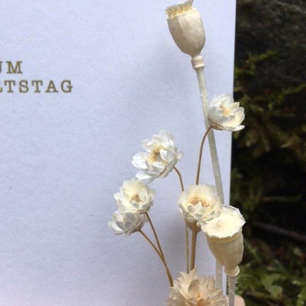 Trockenblumen & Kartenständer Bild 3