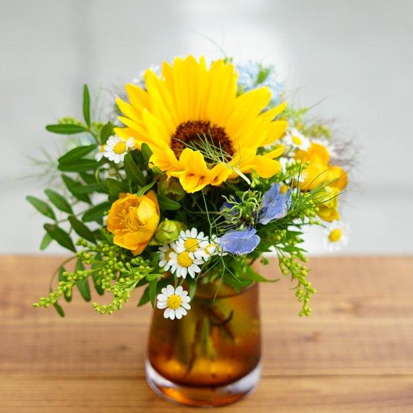 Komplett-Set Sonnenblume Bild 1