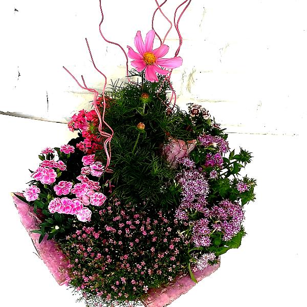 Scha 4  Grabschale in pink-rosa Bild 2