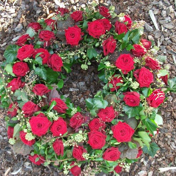 Einfach rote Rosen Bild 1