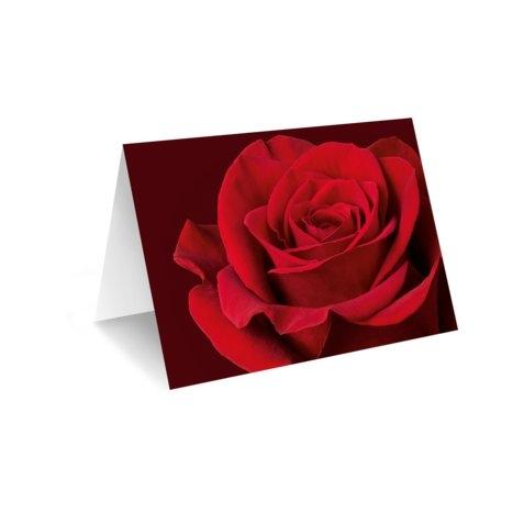 Grußkarte 'rote Rose' Bild 1
