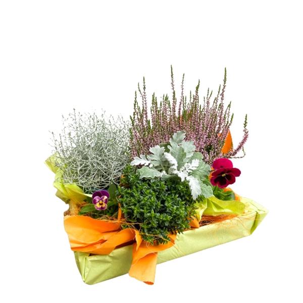 Herbstliche Kiste Bild 1