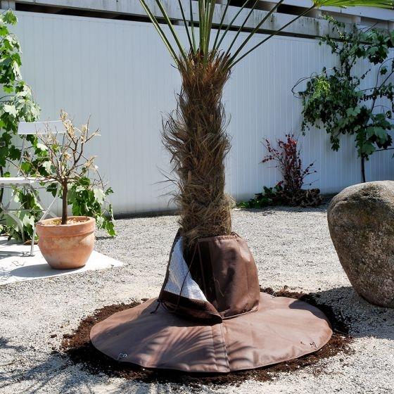 Bio Green Palmen-Wurzelschutz Bild 2