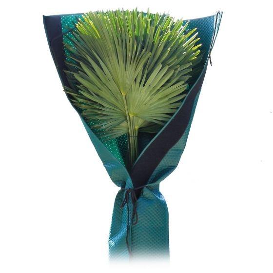 Bio Green Palmen-Stammschutz Bild 1
