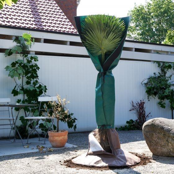 Bio Green Palmen-Stammschutz Bild 2