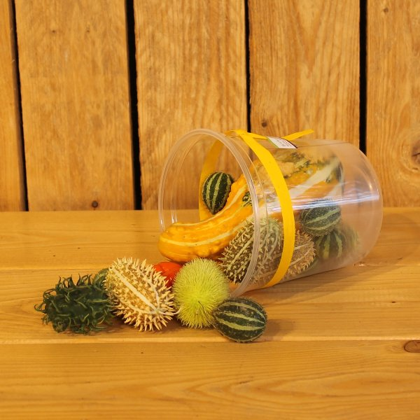Herbstfrüchte Bild 1